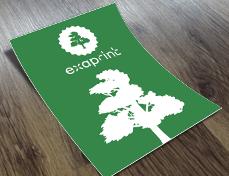 flyer vert exaprint avec logo arbre