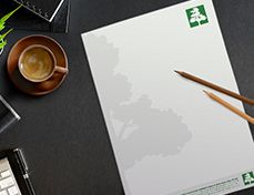 papier tête de lettre verte exaprint avec logo arbre