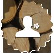 logo une personne avec fond tronc d'arbre